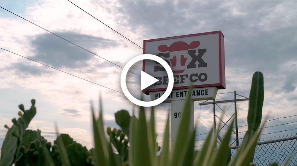 STX HR video screenshot